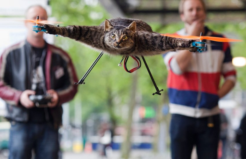 The Orvillecopter by Dutch artist Bart Jansen (R) flies in central Amsterdam as part of the KunstRAI art festival June 3, 2012. Jansen said the Orvillecopter is part of a visual art project which pays tribute to his cat Orville, by making it fly after it was killed by a car. He built the Orvillecopter together with radio control helicopter flyer Arjen Beltman (L) . REUTERS/Cris Toala Olivares (NETHERLANDS - Tags: SOCIETY)